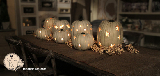 TNE-white-pumpkins-side550